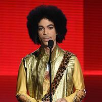 Adik dari musisi Prince,Tyka Nelson tak memiliki perjalanan mudah setelah merilis album debutnya di tahun 1988. Sempat beredar kabar jika Prince tidak membantu saudara perempuannya itu untuk keluar dari masalah keuangan. (AFP/Bintang.com)