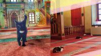 Di cuaca dingin, para kucing bebas berlindung di masjid Aziz Mahmud Hüdayi. (foto: Daily Sabah)