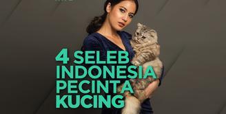 Siapa saja seleb Indonesia yang merupakan pecinta kucing? Yuk, simak videonya!