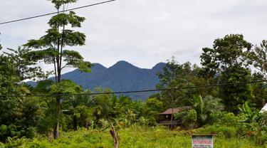 Pagi Di Tanah Hitam Negeri Penghasil Kopi Liberika
