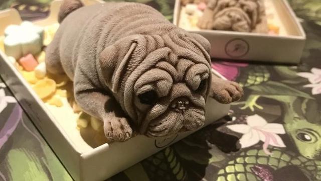Es krim anjing di Taiwan (instagram @sowingthesweets)