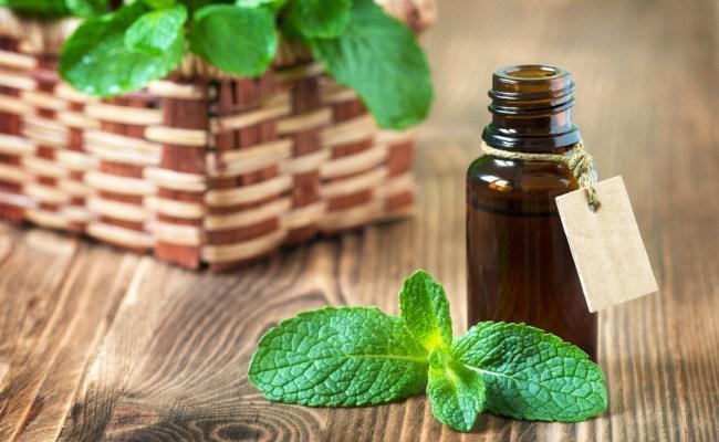 Peppermint Essential Oil/Copyright Shutterstock