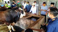 MHI yang dikelola di Desa Sragi, Kecamatan Talun, Kabupaten Blitar ini cocok sebagai solusi padi berlahan sempit dengan hasil tinggi, biaya lebih irit, lahan menjadi lebih subur dan pendapatan ganda dari ternak. Dok Kementan