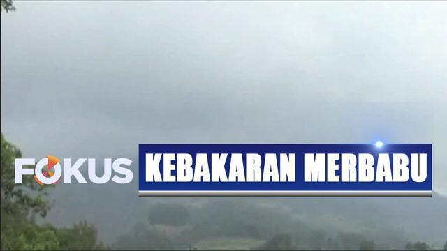 Kebakaran di lereng Gunung Merbabu kini sudah mencapai 250 hektar.