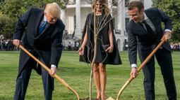 Presiden AS Donald Trump bersama Presiden Prancis Emmanuel Macron saat upacara penanaman pohon di Gedung Putih, Washington (23/4). Pohon itu hadiah dari Presiden Macron yang berasal dari Belleau Woods, dekat Sungai Marne. (AP Photo / Andrew Harnik)