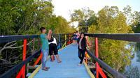 Wisata Mangrove Gorontalo (Liputan6.com/Arfandi Ibrahim)