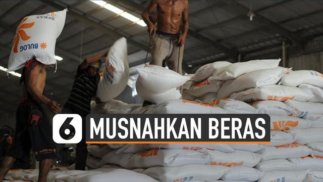 Bulog musnahkan 20 ribu ton beras di gudangnya.