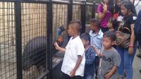 Berada di deretan paling depan pintu masuk, tingkah lucu burung kasuari menjadi daya tarik para pengunjung yang datang ke taman Cikembulan, Garut, Jawa Barat, saat liburan lebaran kali ini. (Liputan6.com/Jayadi Supriadin)