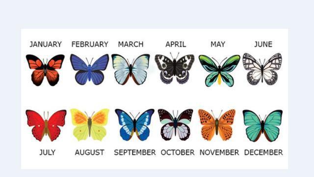 Bulan kelahiraan yang diwakili dengan simbol kupu-kupu cantik./Copyright dailyoccupation