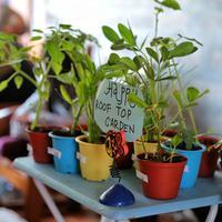 Komunitas Urban Farming Jakarta: Ajak masyarakat berkebun di rumah. (Fimela.com/Adrian Putra)