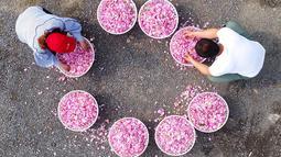 Petani memilah kelopak mawar yang dapat dimakan di Haian, Provinsi Jiangsu, China, Senin (14/5). (AFP)