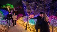 Gambar pada 11 Januari 2020, pengunjung berswafoto saat menyaksikan keindahan ribuan lampu di Garden of Morning Calm, sebelah timur Seoul di distrik Gapyeong, Korea Selatan. Festival cahaya tahunan tersebut dinikmati saat musim dingin, Desember sampai akhir bulan Maret. (Ed JONES / AFP)