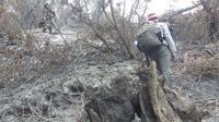 Kebakaran Gunung Slamet di Brebes dan Banyumas, sembilan hari terakhir padam di petak 58D-12. (Foto: Liputan6.com/Muhamad Ridlo)