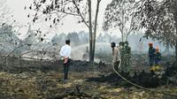 Jokowi melihat proses pemadaman kebakaran lahan di Desa Merbau, Pelalawan,Riau. (Liputan6.com/Istimewa/M Syukur)