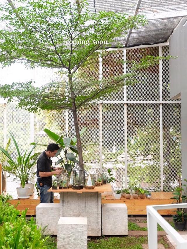 6 Kafe Bernuansa Alam Di Jakarta Berasa Liburan Di Luar Kota Lifestyle Liputan6 Com