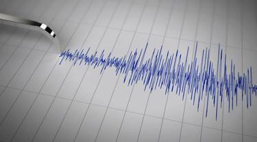 Gempa 7,9 SR di Papua Nugini, Indonesia Aman