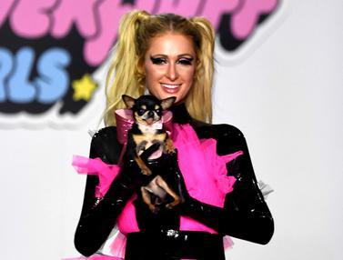 Paris Hilton Bawa Anjing Lucu Saat Fashion Show di LA