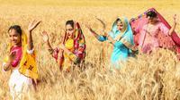 Pemuda Sikh menampilkan tarian tradisional rakyat Punjab atau Bhangra jelang festival panen Baisakhi di ladang gandum pinggiran Amritsar, India, 11 April 2021. Baisakhi adalah festival yang dirayakan di seluruh India utara, terutama di wilayah Punjab oleh komunitas Sikh. (NARINDER NANU/AFP)