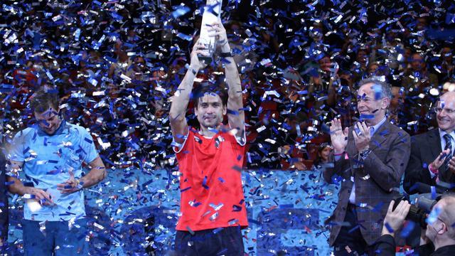 Petenis asal Spanyol, David Ferrer bercerita tentang perasaannya kala merengkuh juara di Erste Bank Open 2015 Wina dan cedera yang ia alami saat bertanding di Nottingham.