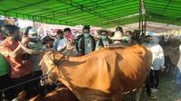 Mentan Syahrul Yasin Limpo bersama Gubernur NTB Zulkieflimansyah, meninjau anak sapi (Pedet) di Desa Barabali, Lombok Tengah, NTB. (Liputan6.com/Hans Bahanan)