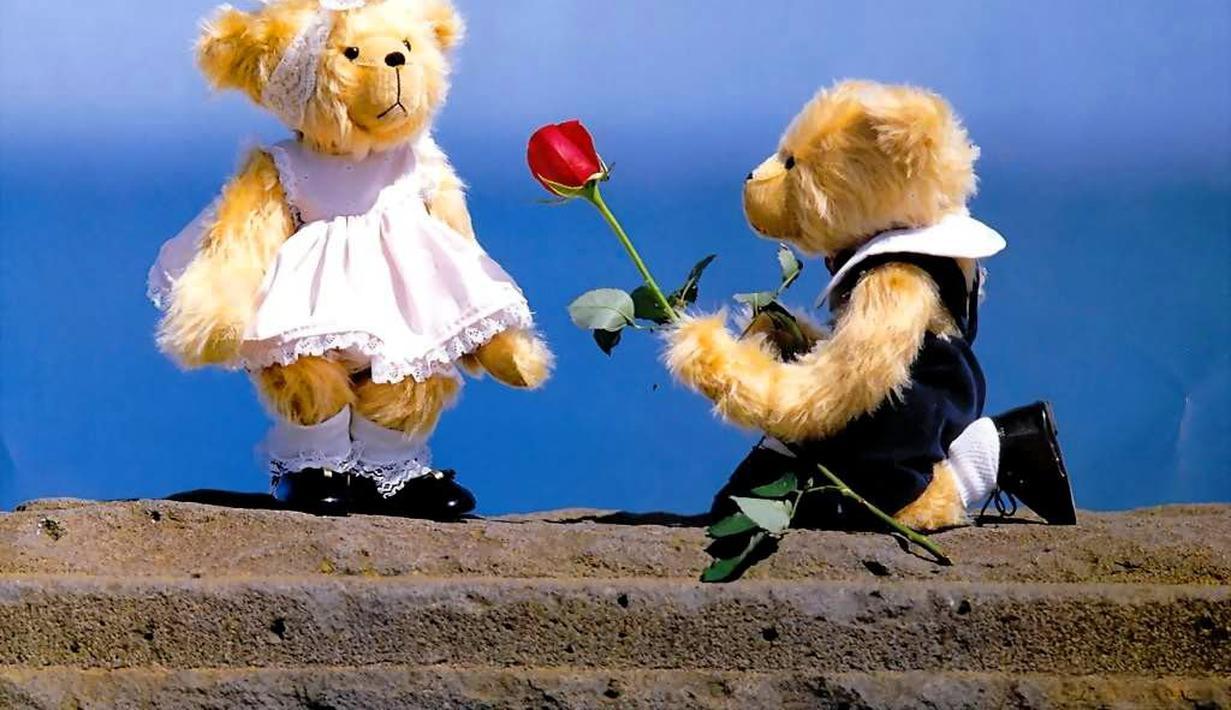 Boneka Couple Teddy Bear Bisa Romantis Anda Pasti Iri Dengan Mereka