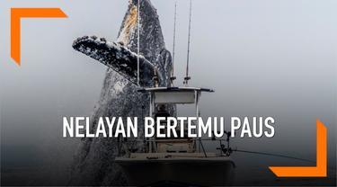 Seekor Paus Humpback atau Paus Bungkuk tertangkap kamera tengah melesat keluar dari laut dekat dengan perahu seorang nelayan. Paus diperkirakan memiliki bobot sekitar 28 hingga 33 ton.