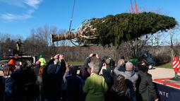 Pekerja menggunakan derek untuk mengangkut pohon Natal raksasa ke atas sebuah truk di Wallkill, New York, Sabtu (10/11). Pohon cemara jenis The Norway Spruce ini akan didirikan di Rockefeller Center. (Patrick Oehler/Poughkeepsie Journal via AP)