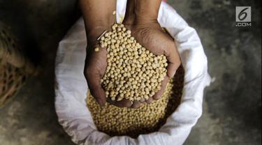 Pekerja menunjukkan kedelai untuk membuat tempe, Kemayoran, Jakarta, Kamis (6/9). Harga kedelai untuk produksi tempe meningkat dari Rp 6.500 menjadi Rp 7.700 pascanilai tukar dolar mengalami kenaikan terhadap rupiah. (Liputan6.com/Herman Zakharia)