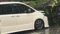 Mobil Erros Djarot saat tertimpa pohon tumbang. (Instagram/@erros_djarot)