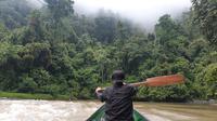 Lokasi pelepasliaran orangutan di Kaltim (Liputan6.com / Gusti Yovanda)