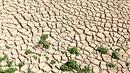 Tanah di dasar bendungan El-Haouareb mengalami retak-retak akibat kekeringan di dekat Kairouan, sekitar 160 km selatan Tunis, Tunisia, 13 Juli 2017. Wilayah ini mengalami kekeringan parah yang disebabkan oleh kemarau berkepanjangan. (FETHI BELAID/AFP)