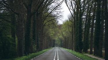 Ilustrasi jalan