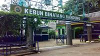 Yuk, kunjungi Kebun Binatang Bandung!