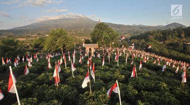 Pemandangan ribuan bendera Merah Putih berkibar di perkebunan teh Kemuning, Desa Girimulyo, Karanganyar, Jawa Tengah, Sabtu (25/8). 1.970 bendera Merah Putih dikibarkan masyarakat setempat menyemarakkan HUT ke-73 RI. (Merdeka.com/Iqbal S. Nugroho)