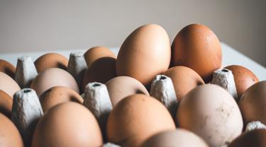 Jangan Sembarangan, Ketahui Cara Menyimpan Telur yang Benar di Dalam Kulkas