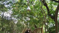 Pagi Mesra di Hutan Kota Joyo Boyo (Liputan6.com/Dian Kurniawan0