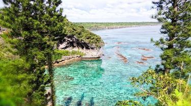 Ilustrasi New Caledonia