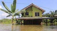 Banjir di Kampar. (Liputan6.com/M Syukur)
