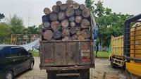 Badan Penegakkan Hukum Lingkungan Hidup dan Kehutanan (BPPLHK) menahan satu truk berisi kayu yang diduga hasil pembalakan liar. (Liputan6.com/ M Syukur)