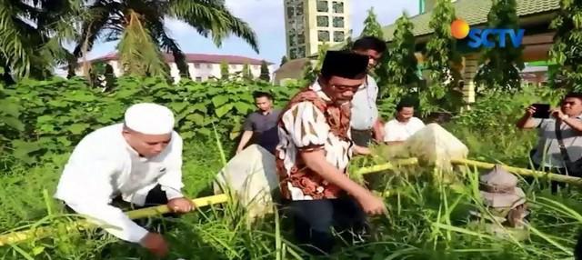 Hargai leluhur, Cagub Sumut Djarot Saiful Hidayat lakukan ziarah dan cabuti rumput di makam leluhur Kesultanan Asahan.