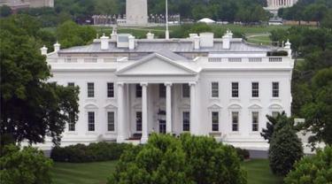 Anjing Penjaga Gagalkan Penyusup Gedung Putih AS