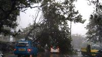Puting Beliung Landa Bogor, 8 Rumah Rusak dan Pohon Tumbang (Liputan6.com/Achmad Sudarno)
