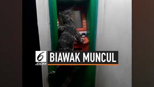 Sebelumnya, media sosial dihebohkan dengan foto-foto biawak yang memanjat pagar rumah warga. Kini, seekor biawak kembali muncul dengan menempel di sebuah mesin ATM di Thailand.