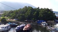 Sisa hutan mangrove Manggadua di Pulau Ternate. (Liputan6.com/Hairil Hiar)