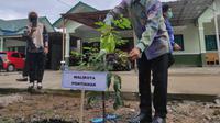Wali Kota Pontianak Edi Rusdi Kamtono, bersama Komandan Kodim (Dandim) 1207/Berdiri Sendiri (BS), Kolonel Infanteri Jajang Kurniawan, menanam pohon bersama, Kamis (5/11/2020). (Liputan6.com/ Aceng Mukaram)