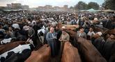 Aktivitas pedagang ternak dan pembeli menjelang Idul Adha di pasar Ashmun, Mesir, Rabu (15/8). Dalam Perayaan Idul Adha, umat islam di seluruh dunia akan menyembelih hewan ternak seperti kambing, domba, onta, sapi dan kerbau. (AFP/Mohamed el-Shahed)