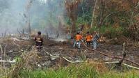 Kebakaran hutan dan lahan di Kalimantan Barat. (Liputan6.com/Raden AMP)