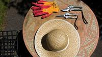 Paparan sinar matahari, noda tanah, dan gesekan rumput di kulit dapat menimbulkan gatal dan iritasi. Tangan pun menjadi kasar.
