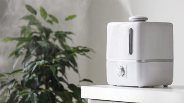 Mengenal Humidifier Sebagai Alat Pengatur Kelembapan Udara