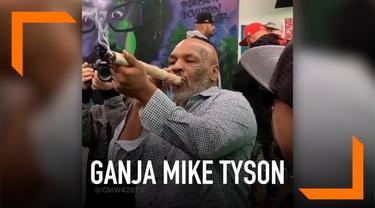 Mike Tyson menghadiri festival ganja di Los Angeles, AS. Dalam acara tersebut ia mengisap ganja berukuran 30 cm.